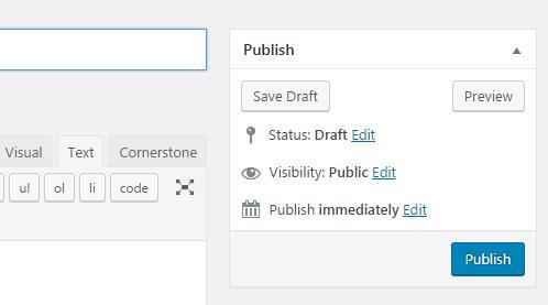 WordPress publishing options panel